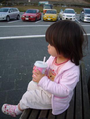 2008 03 22 007_1.jpg