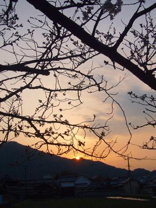 2008 03 29 008_1.jpg