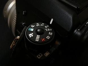 DSC00794_1.JPG