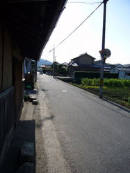 P1000427_1.jpg